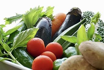 四季を感じる旬の食材を提供